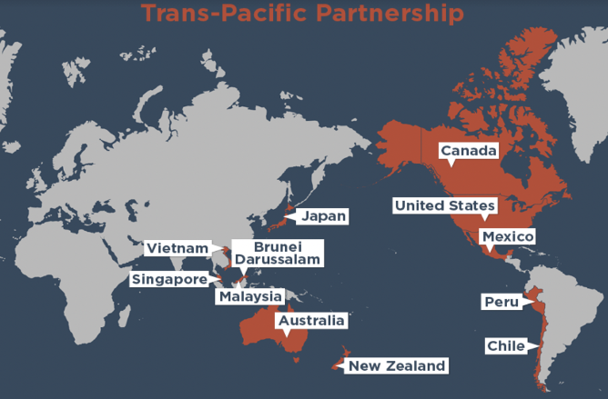 Vagueness and Contradictions in the Trans-Pacific Partnership: Elusive Standards?